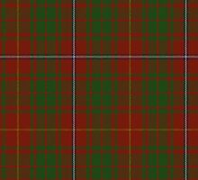00107 Bruce County District Tartan  by Detnecs2013