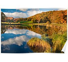 Autumn on the river Brathay Poster