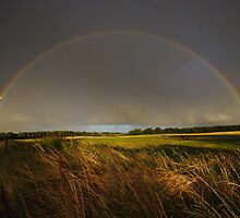 Double Rainbow on Harlow Common by Nigel Bangert