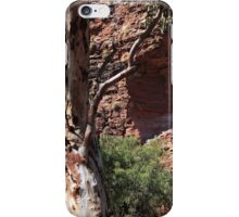 Natures paintbrush in the Outback iPhone Case/Skin