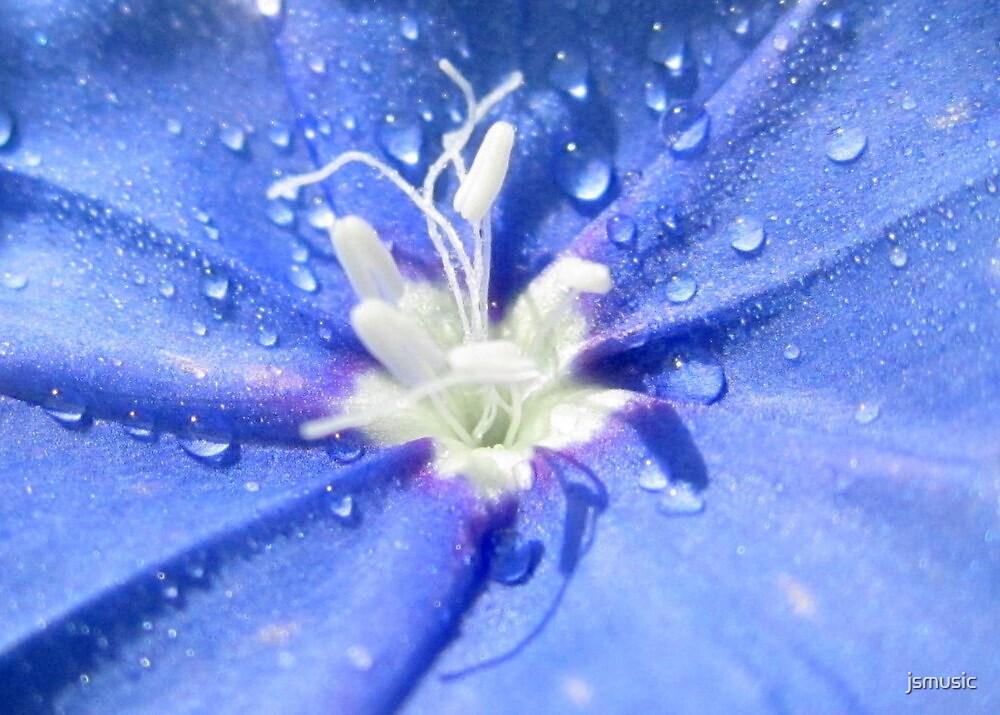 Am I Blue? by jsmusic