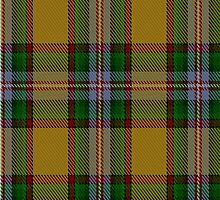 00111 Essex County (Ontario) Tartan by Detnecs2013