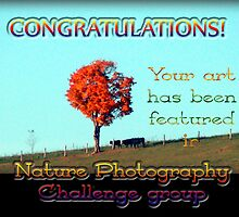 nature photography challenge group by vigor
