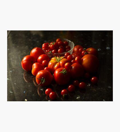 Fresh Tomatoes Photographic Print