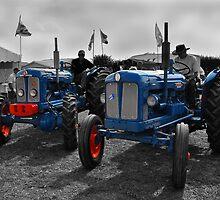 Fordsons at the Great Dorset Steam Fair by Rob Hawkins