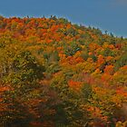 Fall colors in New England by Chuck Kittrell