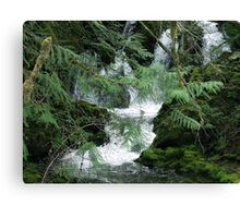 Koksilah River Falls Canvas Print