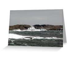 Wild Weather Greeting Card