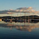 Mountshannon Mirror - Clare, Ireland by Orla Flanagan