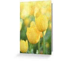 .yellow. Greeting Card