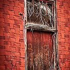 Old Rail Way Door by KFuoco