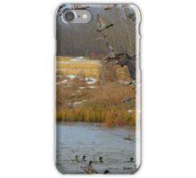 Waterfowl iPhone Case/Skin