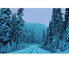Scenic Snowy Drive Photographic Print