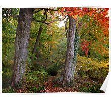 October Woodland Poster