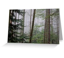 distant beauty Greeting Card