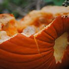 Smashed Pumpkin by Alley Aber