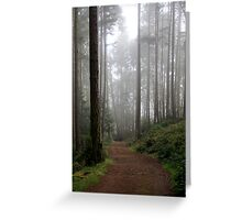 traveling into the mist Greeting Card