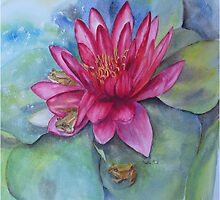 Hide and seek in the Water Lilly by Beatrice Cloake
