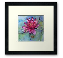 Hide and seek in the Water Lilly Framed Print