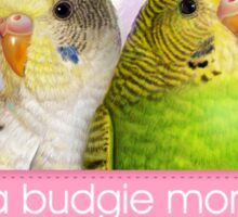 Budgerigars realistic painting Sticker