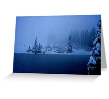 Blizzard! Greeting Card
