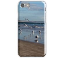 Seagulls waiting for the tide iPhone Case/Skin