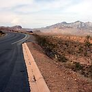 On the road to Lake Mead Nevada USA by RichardKlos