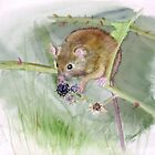 """Field Mouse"" by sooziii"