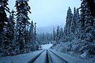 Winter Driving by skreklow