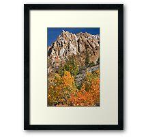 Bishop CA North Fork Fall Framed Print