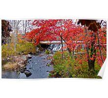 Usquepaug Waterfall - Fall in Rhode Island Poster