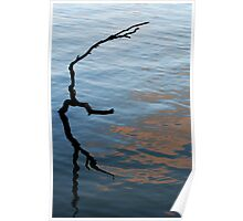 Stick reflection - Murray River Poster