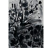 Urban Black-Sumi-e-Art Japanese ink Painting Photographic Print