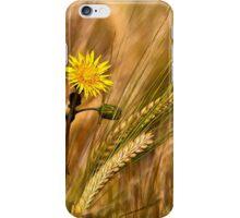 Dandelion and Barley iPhone Case/Skin