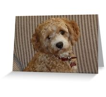 Sweet Little Buddy Greeting Card