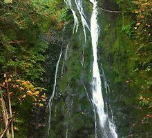 """""""Madison Creek Falls"""" by Lynn Bawden"""