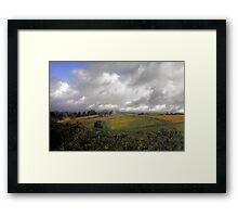 Vines in the Adelaide Hills Framed Print