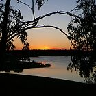 Camping Colours in the Australian Bush by Robyn J. Blackford by aussiebushstick
