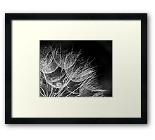 Becalmed Framed Print