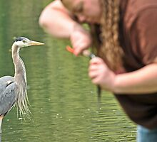 Great Blue Heron and Great Big Fishing Lady by Ken Haley