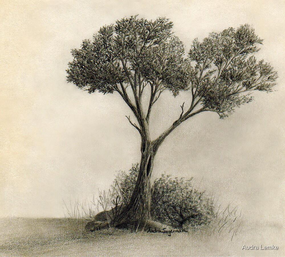 The Tree Quietly Stood Alone by Audra Lemke