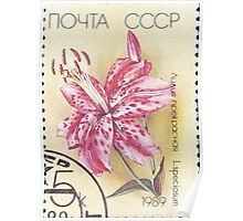 Flowers Soviet Union stamp series 1989 Лилия прекрасная USSR Poster