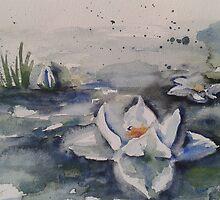 Seerose by Hannis-Atelier