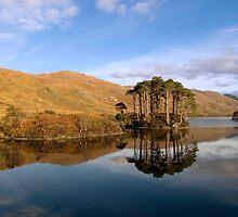 Reflection - Loch Eilt, Scotland by Andy Taylor