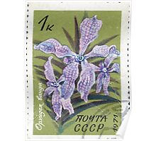 Tropical and subtropical plants Soviet Union stamp series 1971 CPA 4080 stamp Vanda Orchid cancelled USSR Poster