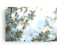 Breathtaking Blossoms Canvas Print