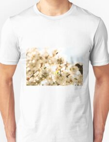 Blossoms and a bee T-Shirt