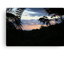 Dawn in Tallebudgera Valley Canvas Print