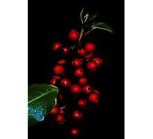 Baubles or berries? Photographic Print