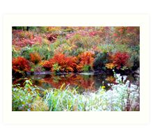 Autumn by a Pond in Vermont Art Print